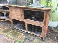 Two Storey Rabbit Hunch with removable room for easy access