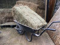 HAY FOR SALE HORSES, RABBITS, GUINEA PIGS, ALPACAS etc