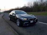 2010 (60) BMW F10 520D AUTO (Audi,BMW,Mercedes,Skoda,VW,Ford,Vauxhall,Jaguar)