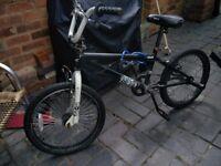Reebok boys BMX bike. Ages 12-14.