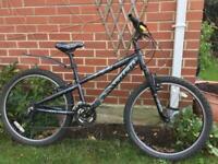 Girls Trek mountain bike for sale