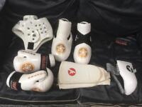 Full set of karate MMA gloves, shin guards foot protectors etc