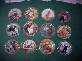 Lesley Anne Ivory cat plates x 24