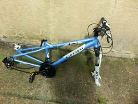 Carrera luna bike frame