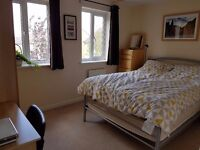 Filton - 2 x Double bed all bills included no contract. Ideal for short term.