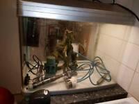 Aqua one 90l aquarium with fluval filter, air pump and 100w heater plus extras