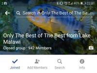 Group on Facebook
