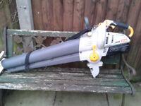 RYOBI petrol leaf blower and vacuum