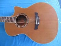 Crafter Acoustic Guitar: Model GAE 15N with bag, strap, capo and stand.