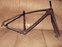 carbon mtb frame and fork. small. free.