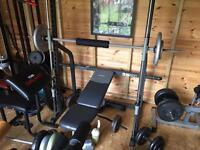 Smith machine gym weight