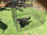 Black metal dog/puppy playpen