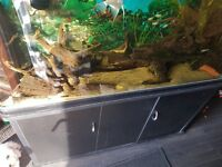 4ft 350litres Fish Tank/Aquarium. Tropical Set Up.