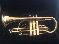 Yamaha Cornet YCR2330ii (Excellent condition)