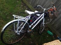 White bike for sale