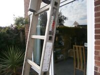 Ladders by YOUNGMAN Double aluminium extending