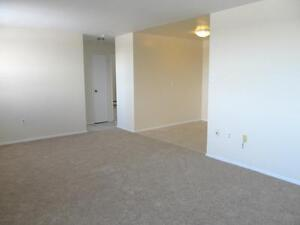 Special: 1 month free rent with Modern Suites! Kitchener / Waterloo Kitchener Area image 2