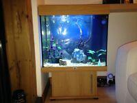 Aquarium 120ltr