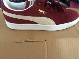 Puma suede size 6 brand new