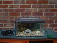 Fish Tank - Clear seal