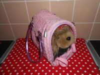 PUCHI PUPS - TOY DOG IN CARRY BAG