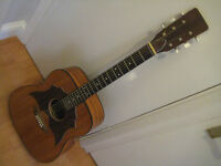 Old Ormond acoustic guitar (like EKO)