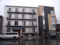 2 ½  plateau Mont-Royal 660$ TOUT INCLUS