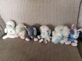 Assortment of blue nose bears