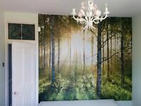 Service: Kitchen, Painting, Decoration, Handyman, bathrooms General Builder, fencing.
