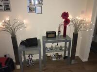 REDUCED Chrome/silver/glass shelves & LED lights