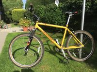 Men's Raleigh Special Products Mountain Bike