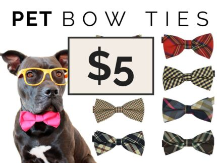 Fancy Dog Bow Ties Helensvale Gold Coast North Preview