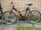 Adult Magna Mountain Bicycle