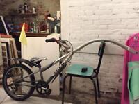 Tag along kids bike