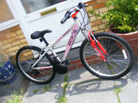 "RALEIGH 24"" WHEEL BIKE IN GREAT WORKING ORDER 14"" ALUMINIUM FRAME AGE 8+"