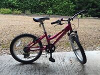 Girls 6 gear bicycle with stand and bell