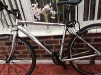 Claude butler urban 200 hybrid bike