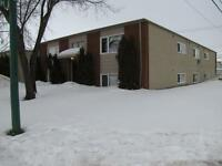 1 Bedroom Suite Cats OK Available January 1