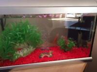 Elite Style Fish Tank Aquarium