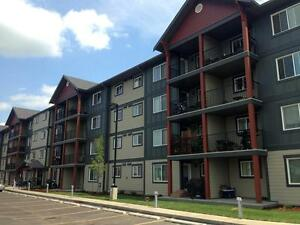 2 Bedroom Apartment for Rent in Edmonton: 6 Appliances Included! Edmonton Edmonton Area image 13