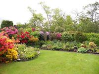 gardener bangor donagadee areas