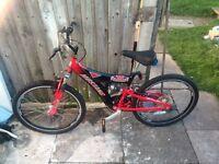 Mustang Mountain Bike