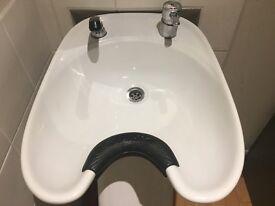 Professional backwash hairdressing sink