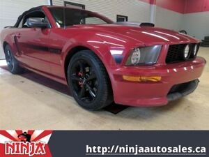 2009 Ford Mustang GT/CS-Warriors Pack-Leather