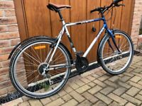 Mountain bike by Vitamin Decathlon in excellent condition.