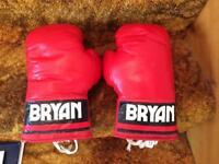 Bryan 10oz boxing gloves