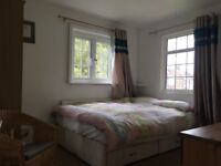 Large double room with ensuite bathroom to rent