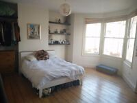 Room to rent in Southville for one month
