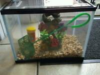 fish tank with lovely ornament ect