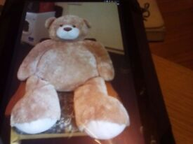 Large Teddie for sale
